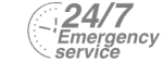 24/7 Emergency Service Pest Control in Brockley, Crofton Park, Honor Oak Park, SE4. Call Now! 020 8166 9746